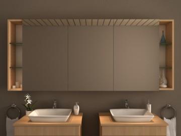 ohne Beleuchtung - Badspiegel.de