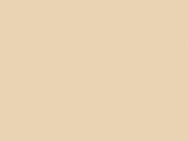 hell beige k chenr ckwand aus glas nach ma spritzschutz. Black Bedroom Furniture Sets. Home Design Ideas